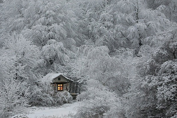 winter-photography-5